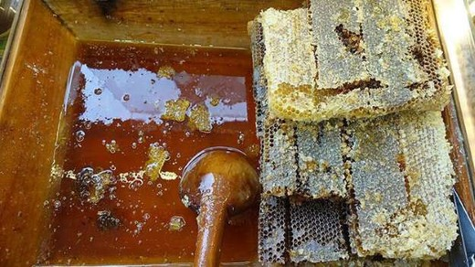 Turkkilaista hunajaa vietiin 45 maahan vuonna 2019